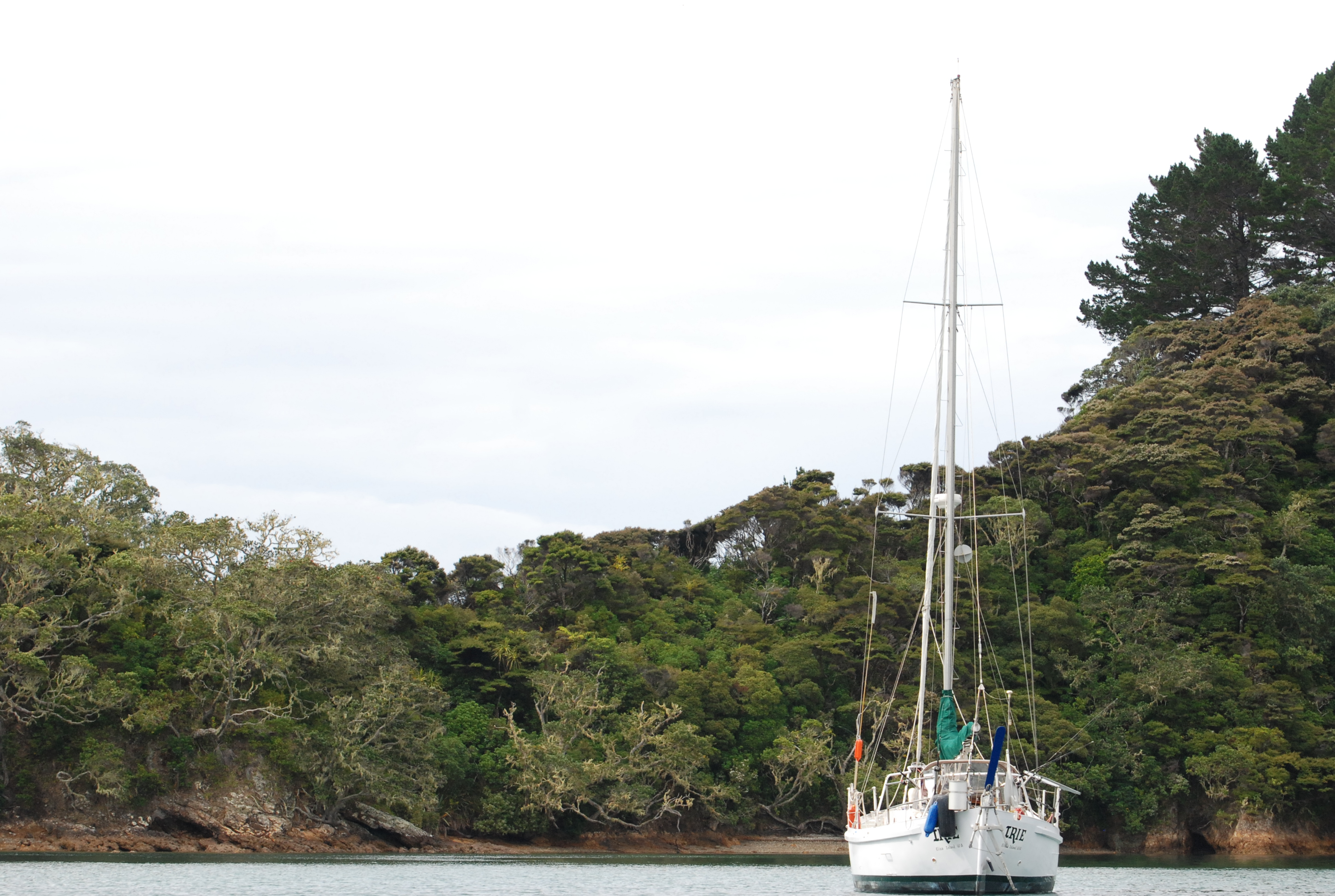 sailing in the bay of islands