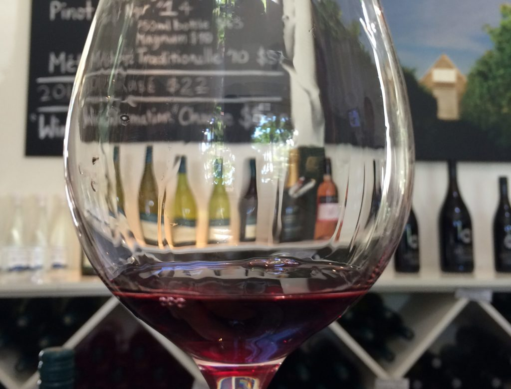 New Zealand's least known wine region is a delightful place to spend a day out from Wellington. Learn about the Martinborough wineries here.
